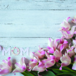 Pink tulips on a wooden background to mothers day